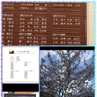 4月13日(木) 「ノートルダムの鐘」