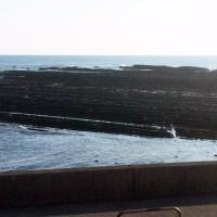 宮崎 青島の朝