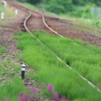 列車が来ない。