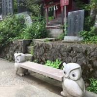 武蔵御嶽神社へ お誕生日ご参拝♪