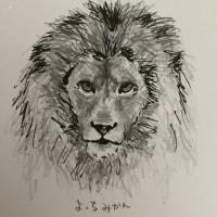 ライオンを書いてみました^_^