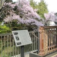 【東国を歩く会】「第9回 歩く日」レポートその4/座学で喋って新宿探訪【クラブツーリズム】