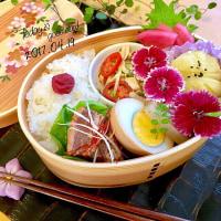 本日の塾弁当❤︎豚の角煮&茶巾絞り