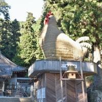 干支『酉』 安志 加茂神社 (姫路市) 2016.12.03