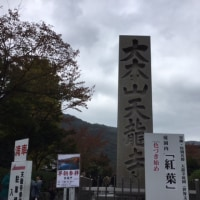 紅葉 天龍寺と永観堂