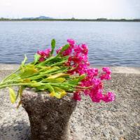 カルマ解消⑳のお花を流しました