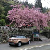 思いつき旅は、福井県から。その4(旅の終わり)