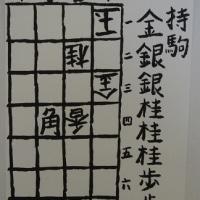 詰将棋番外編第一番<解説> 詰将棋パラダイス平成27年6月号