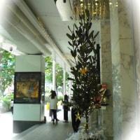 クリスマス飾り@Palais Renaissance