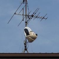 屋根の上のミッキーマウス
