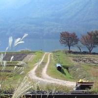 日本への祈りと再生。木崎湖畔「アートイベント&収穫祭」