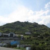 庵原の高山から「みかんの丘」