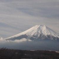 コロンビアでの飛行機事故は日本と縁のある選手等多数 少し冷えたが日差しある月末
