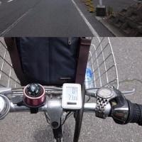 江戸川1周サイクリング