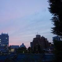 4月27日(木) 晴れ