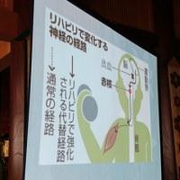 山元加津子さんの講演会
