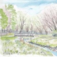 早春の野川公園でスケッチです