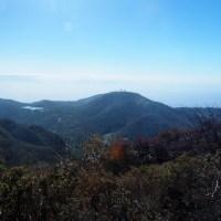 赤城山 / 前橋市 ‐ 駒ケ岳山頂付近 ‐ リンドウ