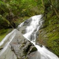 龍ノ頭川の滝