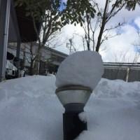 一面の雪景色