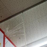 10月21日 鳥取県中部地震