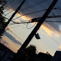 寒い朝☆10/27(木)