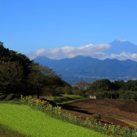 篠窪(しのくぼ)から見る2016年の富士山初冠雪