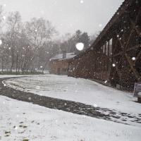 急な雪に注意!  Snow