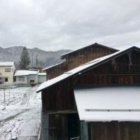 寒〜い1日