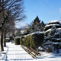 17-01-23 さらり新雪