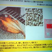 【魚焼きグリルの石】フェリシモさんのロングセラー!魚がおいしく焼ける石を使ってみました~