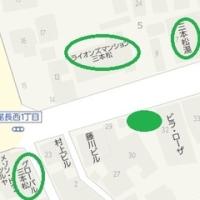 <伝>西国街道の街道松 三本松・広島市東区