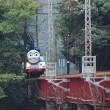 今夏も6月17日から10月9日まで、大井川鉄道でトーマス機関車運行中です