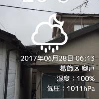 雨上がってます