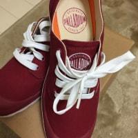 赤い靴〜〜🎵履いてたらるふ🎵