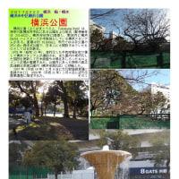 横浜-226 横浜公園