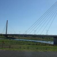 浅川を平山橋まで歩く