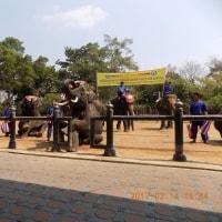 タイ旅行13