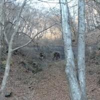 ときどき森へ・・・帰りみちは軽井沢プリンスアウトレットとか・・・♪