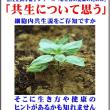 那須塩原で、大田原で、宇都宮で、栃木で、白河で、家づくりに直接関係ないけれど、出来れば読んでほしい一冊