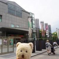 京都国立近代美術館の「ヴァン クリーフ&アーペル」展へ。「要法寺」で今年も育つ鴨の赤ちゃん