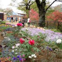 「花と緑のぐんまづくり2016inみどり」で世界遺産活動