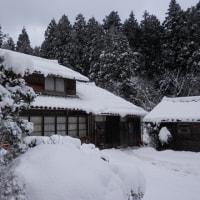 朝から雪かき3800歩