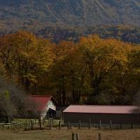 秋から冬への候