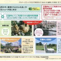 4月より!JRディスティネーションキャンペーンスタート!