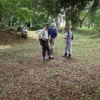 17年06月07日 シダの会 能代市風の松原内調査
