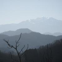 初冬の山歩き