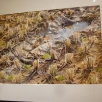 曲山 喜代子 水彩画展 と、 川田正裕 氏の作品を鑑賞してきました