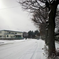 17-01-13 新雪5センチ