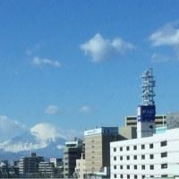 快晴・強風→外出→グリーン・キウイ